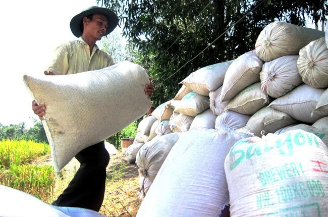 Vietnam may cut down rice land to increase incomes for farmers